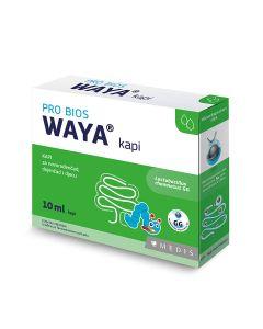 Waya kapi