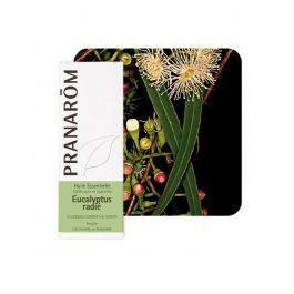 Pranarom eterično ulje eukaliptus radiata, 10 ml
