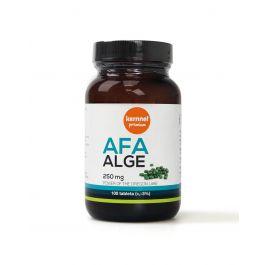 Kernnel AFA alge